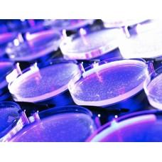 Bakteriyel Endotoksin Analizi