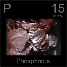 Fosfor (P) Tayini